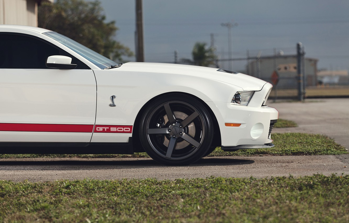 Photo wallpaper road, white, grass, Mustang, Ford, Shelby, Mustang, muscle car, Ford, muscle car, gt500, red stripes