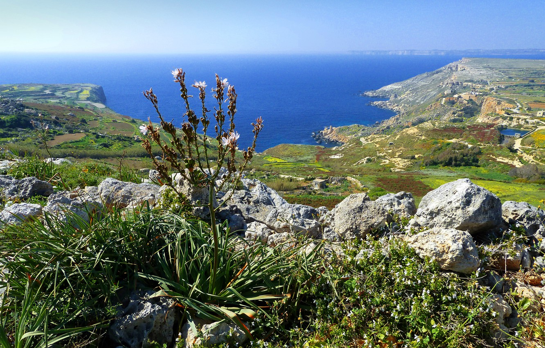 Photo wallpaper sea, the sky, stones, rocks, plant, Bay, Malta