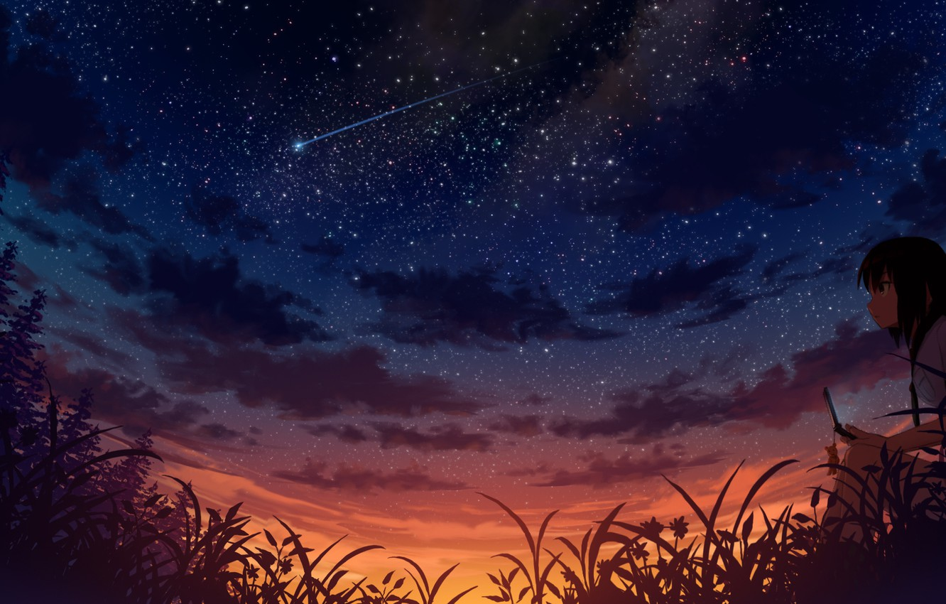 Photo wallpaper girl, night, meteor, art, phone, starry sky, cell phone, sakais3211