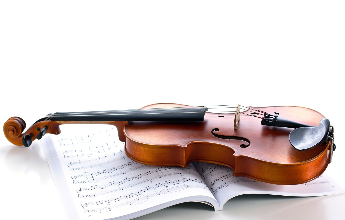 Photo wallpaper notes, violin, strings, white background, journal, musical instrument
