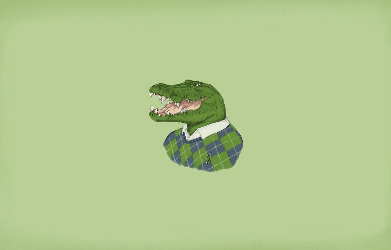 Photo wallpaper crocodile, sweater, alligator, lacoste, it's in the fabric, blondiegbg