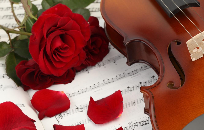 Photo wallpaper flowers, notes, music, violin, roses, petals, music, book, flowers, violin, book, petals, roses, sheet music
