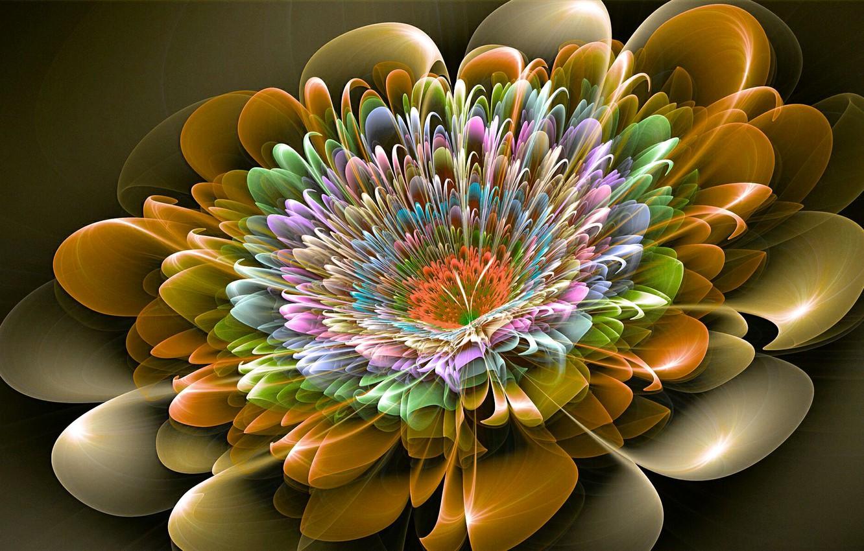 Photo wallpaper flower, line, pattern, paint, the volume