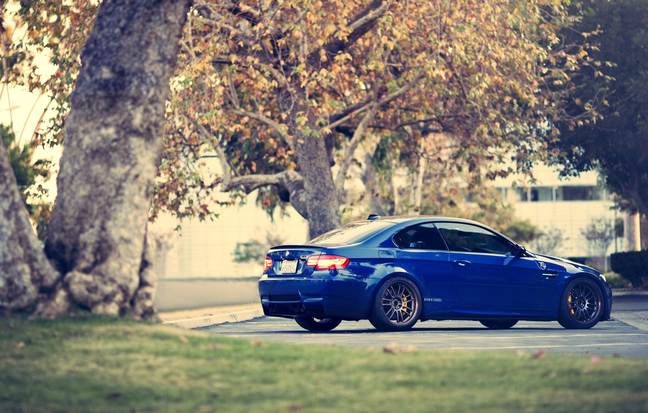 Photo wallpaper trees, blue, BMW, coupe, BMW, Coupe, blue, E92