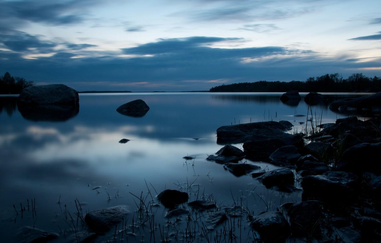 Photo wallpaper forest, stones, Bay, twilight