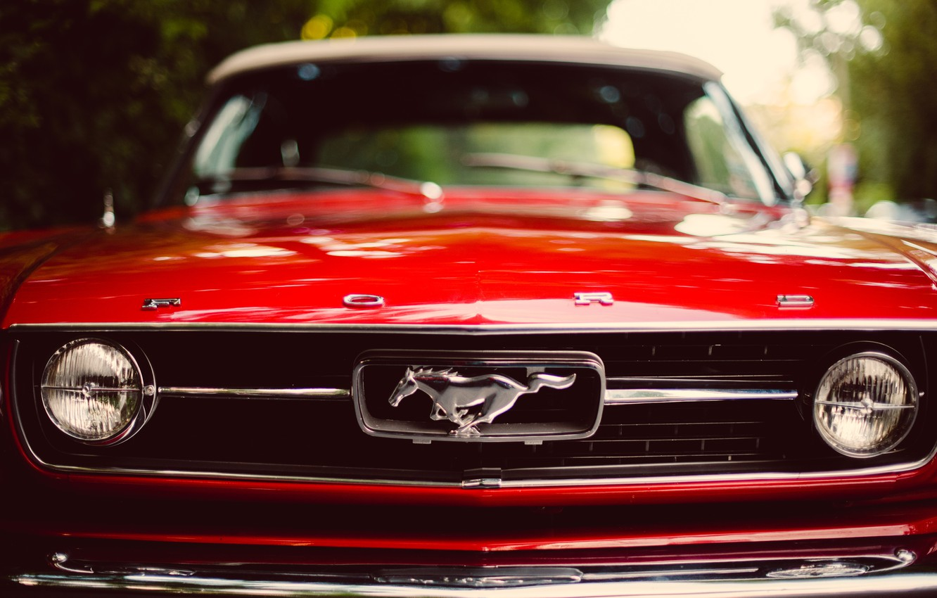 Photo wallpaper red, Mustang, Mustang, red, ford, Ford, the front, classic, bokeh