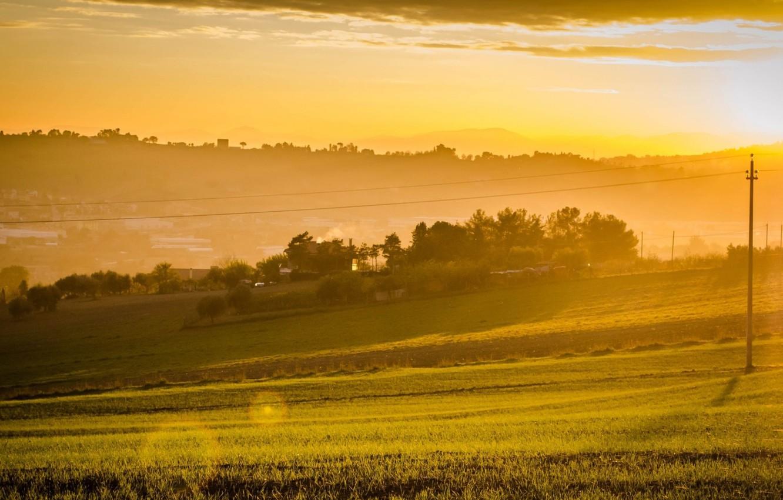 Photo wallpaper field, summer, the sky, landscape, fog, photo, dawn