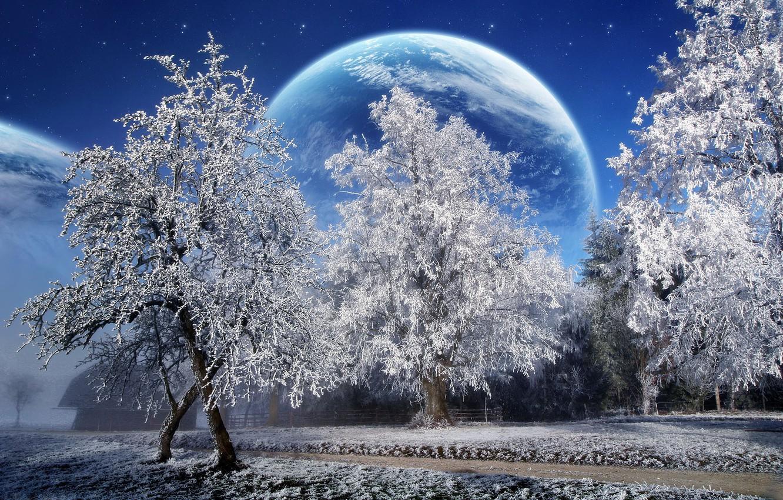 Photo wallpaper winter, snow, trees, planet