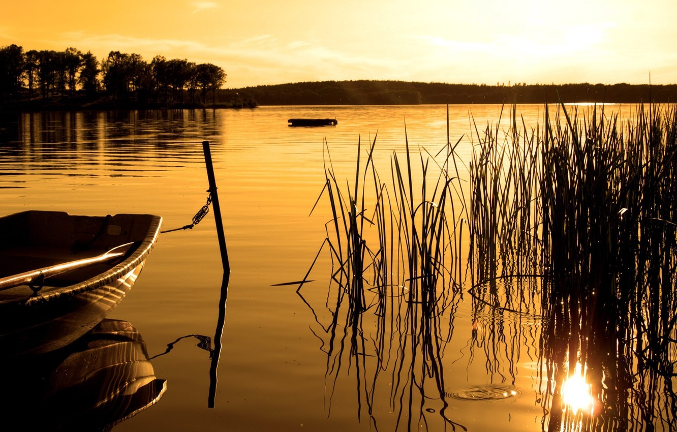 Photo wallpaper forest, sunset, lake, boat, Sepia
