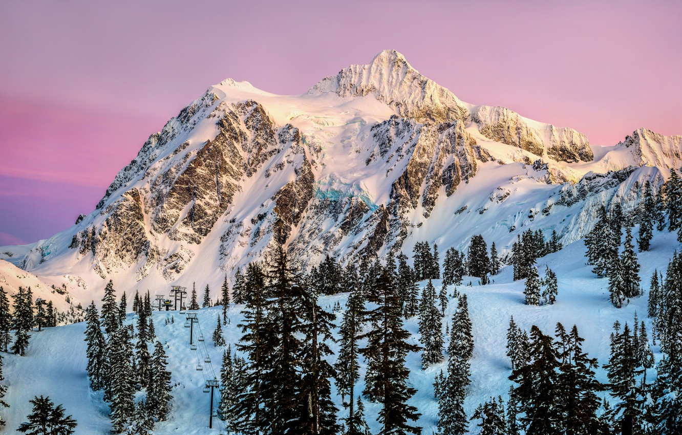 Photo wallpaper winter, forest, the sky, sunset, the evening, pink, USA, resort, North America, Washington, January, Mountain …