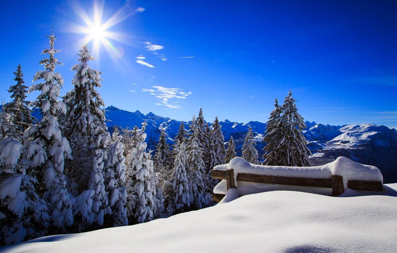 Photo wallpaper winter, forest, the sky, the sun, snow, landscape, bench, nature, Park, white, forest, sky, landscape, …