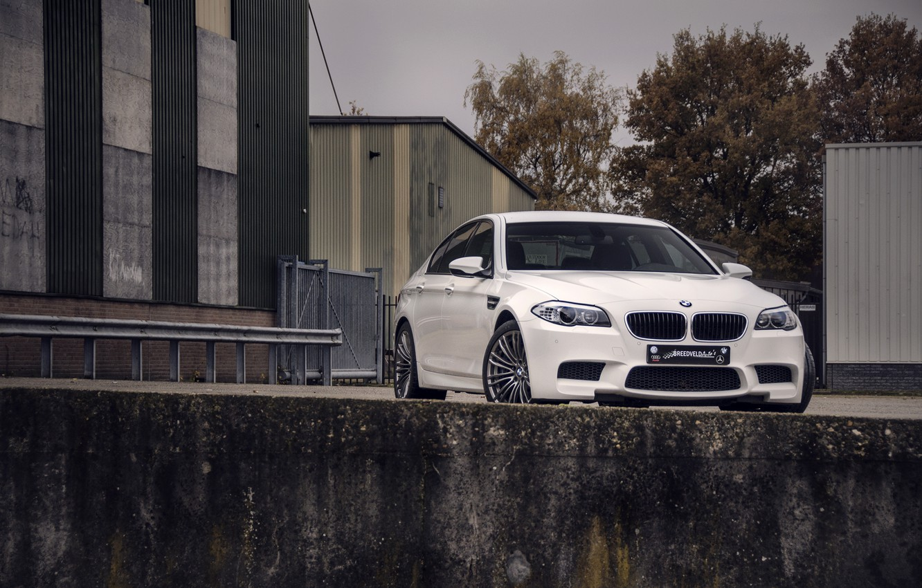 Photo wallpaper white, the sky, trees, building, BMW, BMW, white, front view, f10