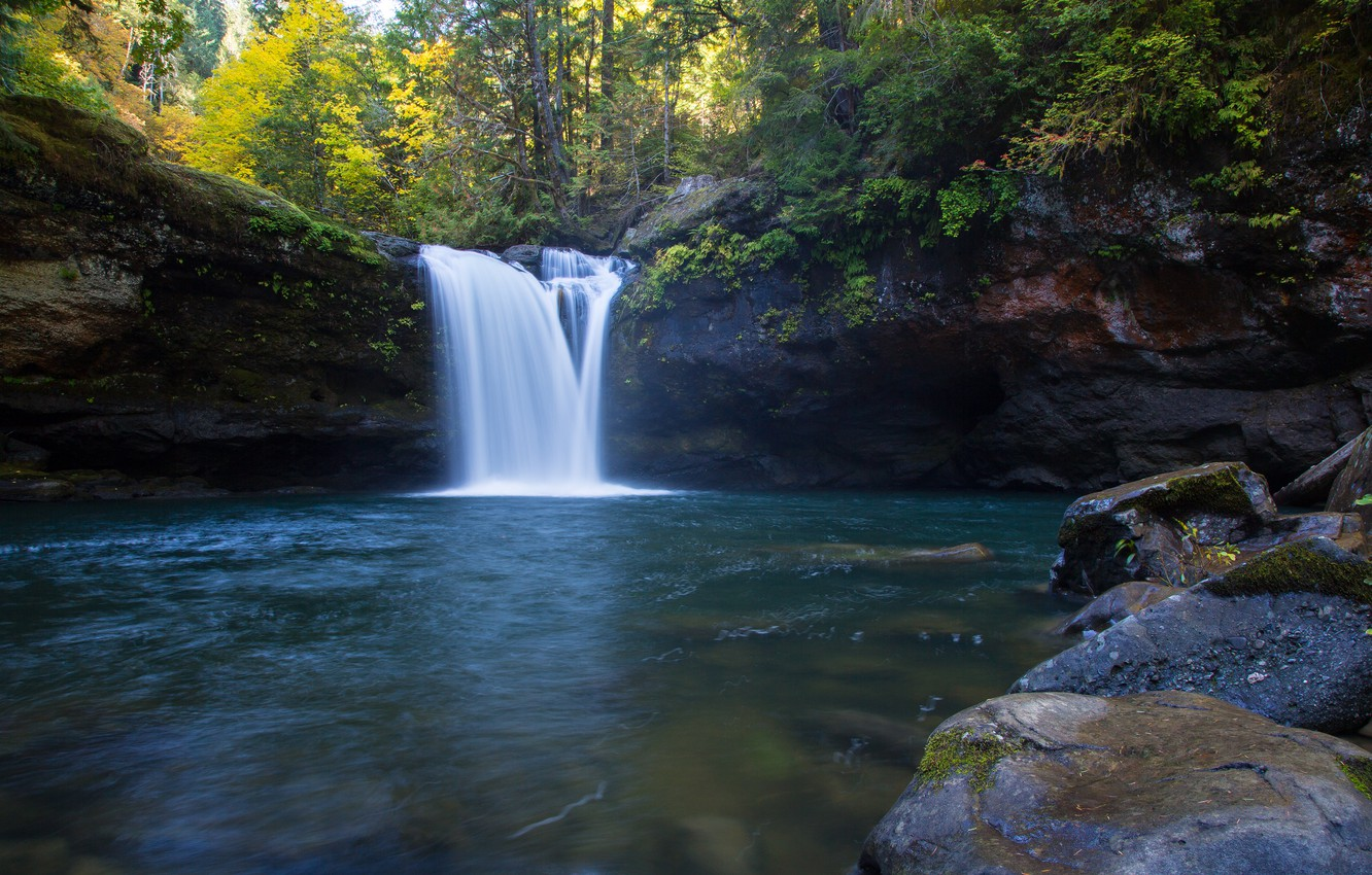 Photo wallpaper forest, Oregon, waterfall river, the South Fork Coquille River, Coos County