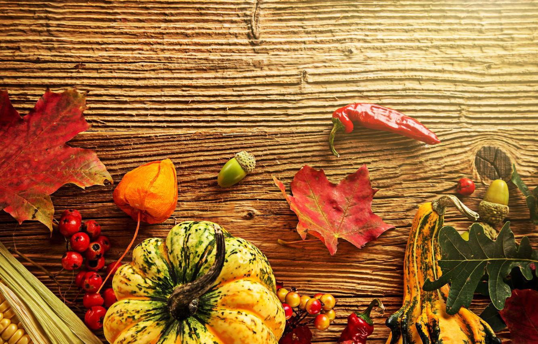 Photo wallpaper autumn, leaves, berries, tree, corn, harvest, pumpkin, pepper, acorns