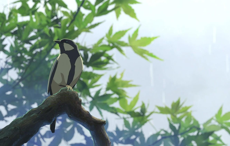 Photo wallpaper Bird, Makoto Xingkai, Garden of Words, The garden of words