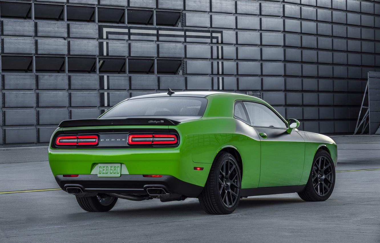 Photo wallpaper green, Dodge, Challenger, car, Dodge, rear view, T/A