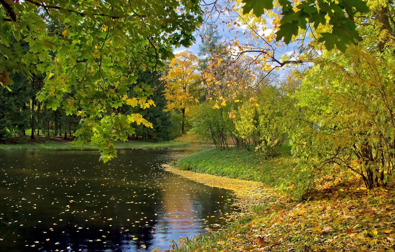 Photo wallpaper autumn, leaves, lake