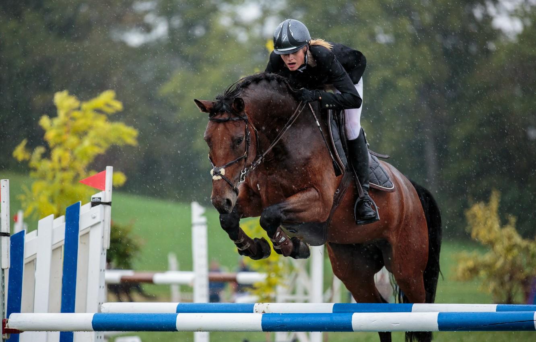 Wallpaper Horse Jump Sport Images For Desktop Section Sport Download