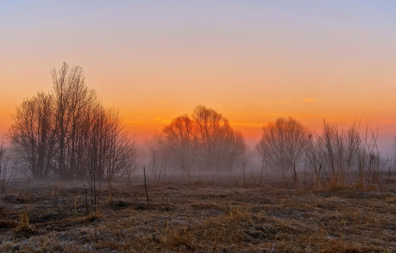 Photo wallpaper field, landscape, sunset, fog