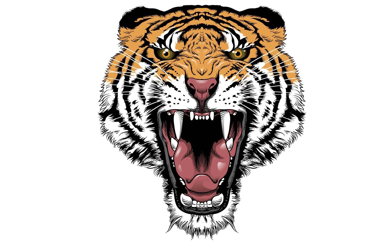 Photo wallpaper tiger, minimalism, head, evil, tiger