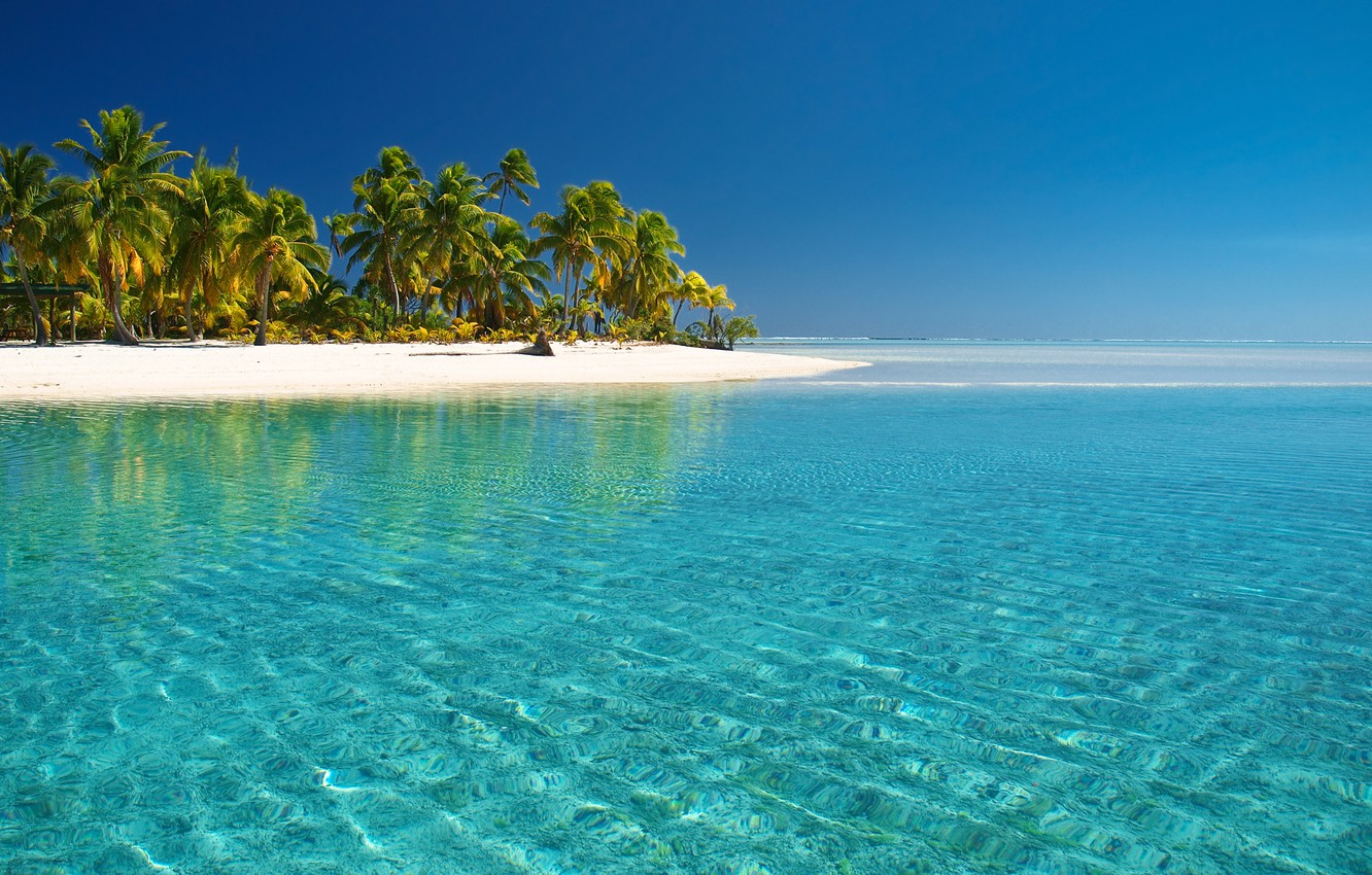 Photo wallpaper sea, beach, palm trees, the Pacific ocean, cook Islands, water transparency, the island of Aitutaki