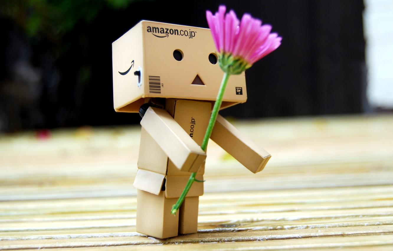 Photo wallpaper flower, gift, robot, danbo, Danboard, box, toy, flower