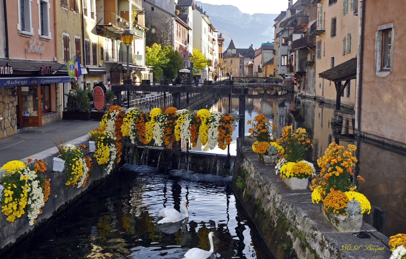 Photo wallpaper river, home, swans, France, Annecy