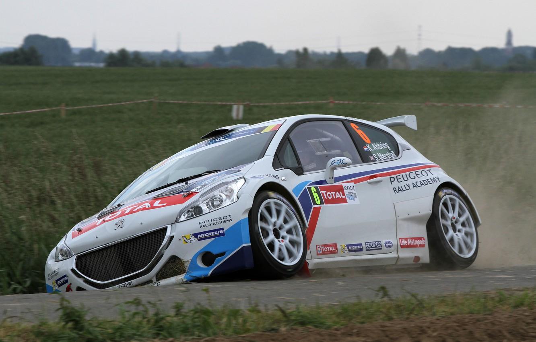 Photo wallpaper Grass, Dust, Peugeot, Rally, 208, T16, ERC, Abbring