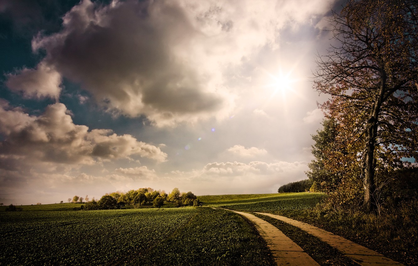 Photo wallpaper road, greens, the sky, the sun, clouds, trees, nature