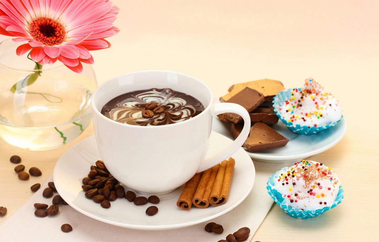 Photo wallpaper flowers, coffee, food, chocolate, Cup, cake, cake, flower, dessert, cup, chocolate, gerbera, coffee, dessert, gerbera