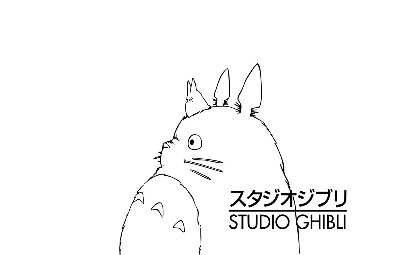 Photo wallpaper my neighbor Totoro, totoro, Totoro