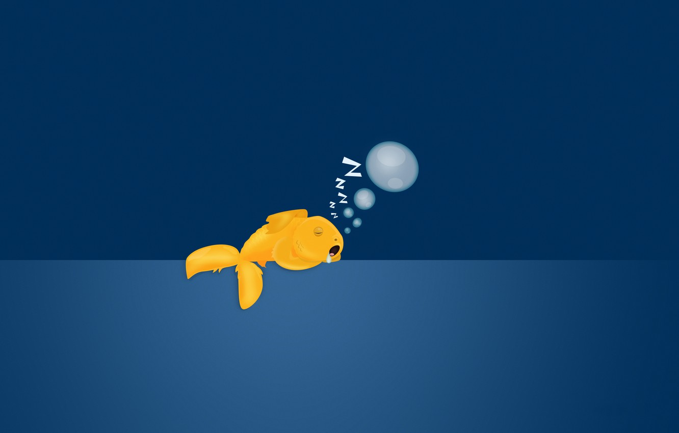 Photo wallpaper bubbles, background, sleeping, goldfish