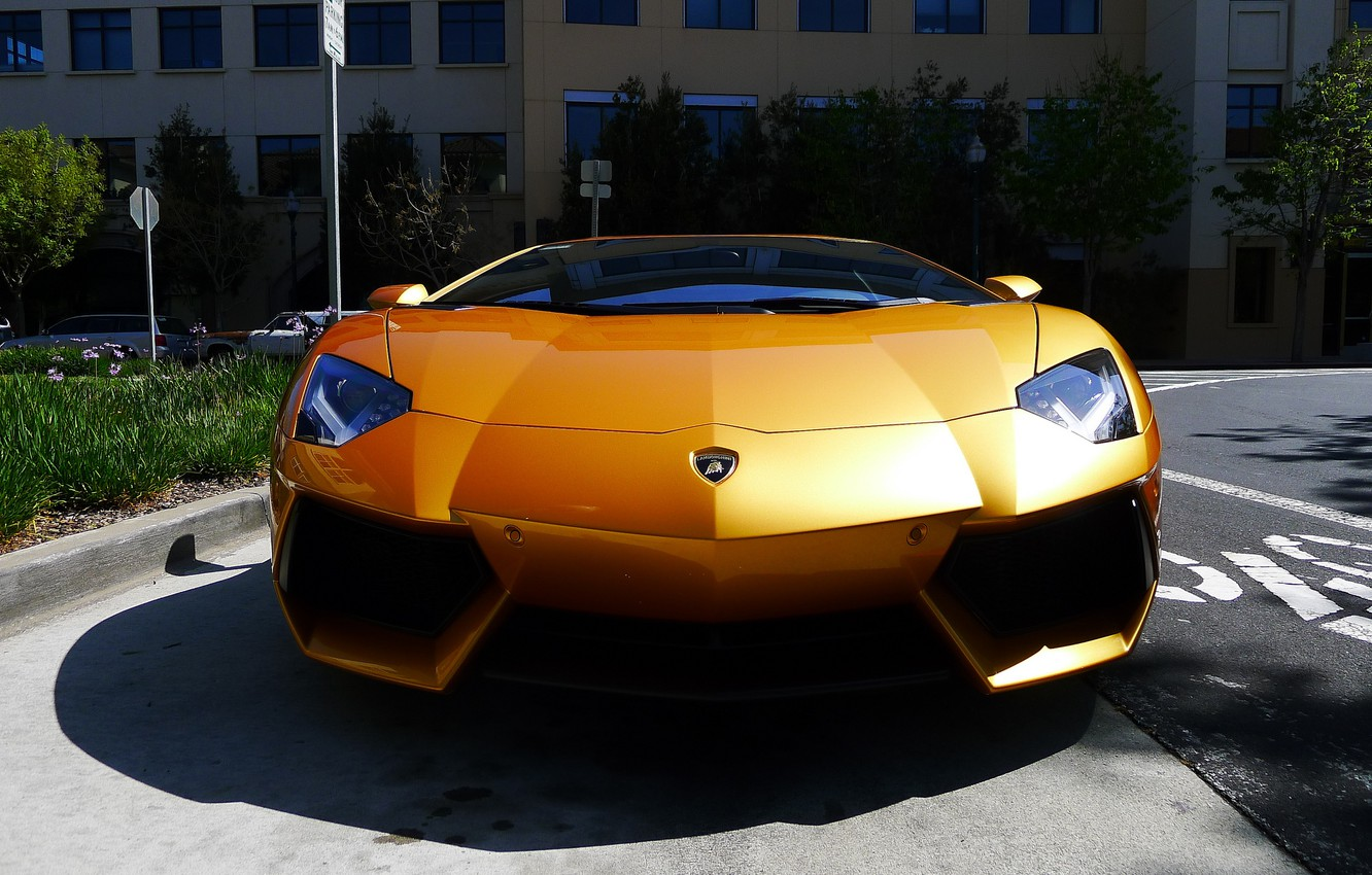 Photo wallpaper reflection, yellow, shadow, lamborghini, yellow, the front, aventador, lp700-4, Lamborghini, aventador