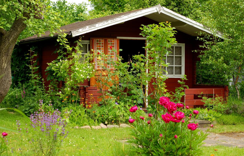 Photo wallpaper summer, trees, flowers, garden, cottage