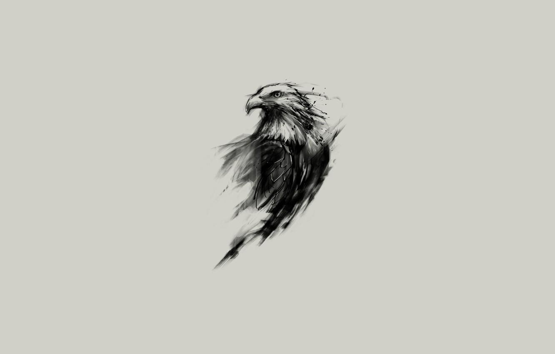 Photo wallpaper look, eagle, figure, wings, minimalism, feathers, beak, art, Animals, animals, minimalism, eyes, art, wings, feathers, …