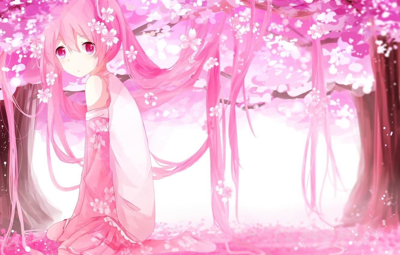 Photo wallpaper girl, trees, flowers, anime, petals, Sakura, art, vocaloid, sakura, mike