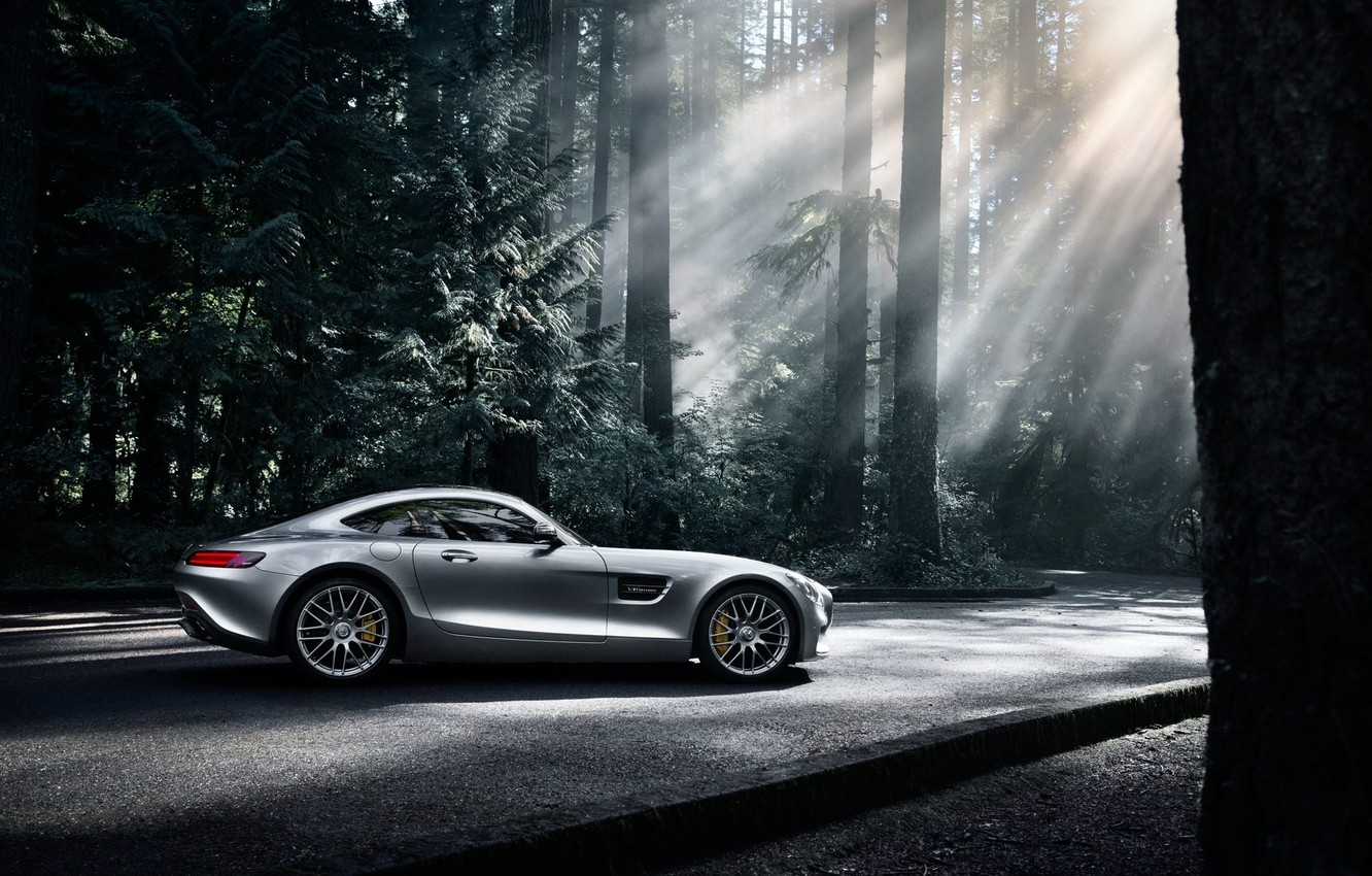 Photo wallpaper Mercedes-Benz, Dark, AMG, Sun, Color, Side, Silver, Forest, 2016, GT S