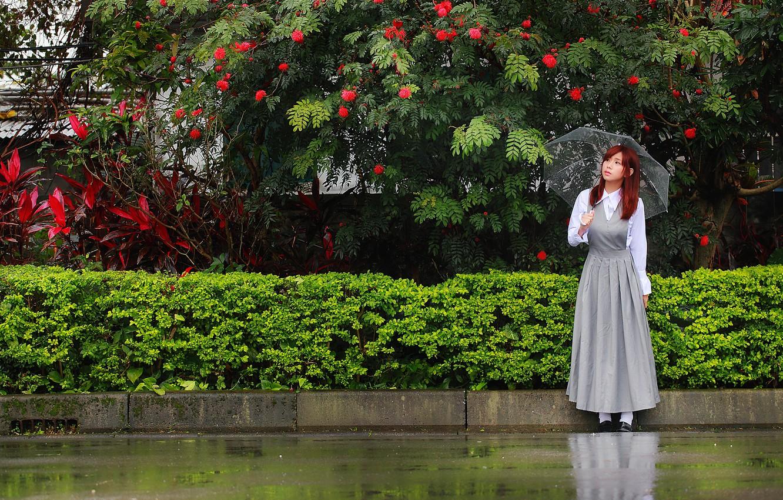 Photo wallpaper girl, umbrella, rain, street