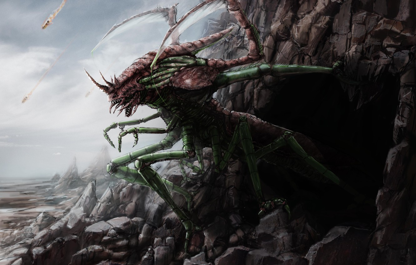 Photo wallpaper stones, rocks, monster, art, insect, cave