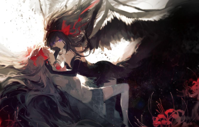 Photo wallpaper anime, art, mahou shoujo madoka magica, homura akemi, madoka kaname