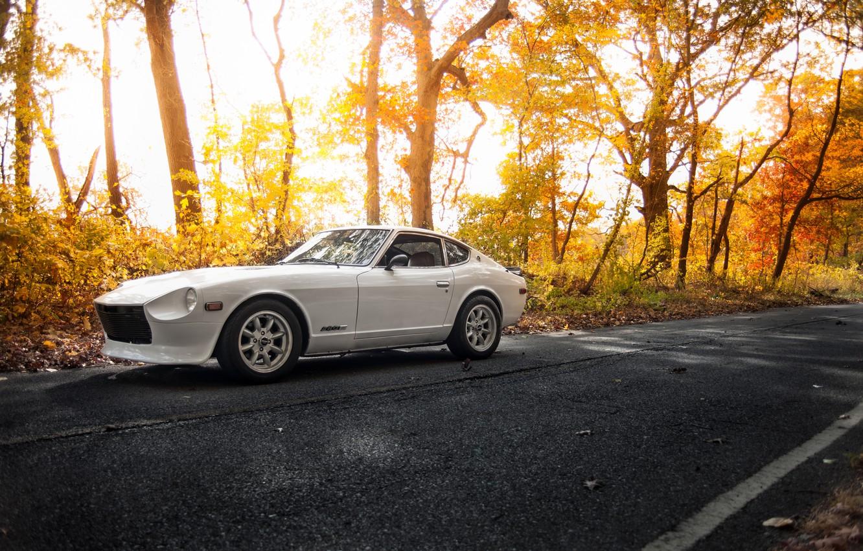 Photo wallpaper white, road, Datsun, 280z