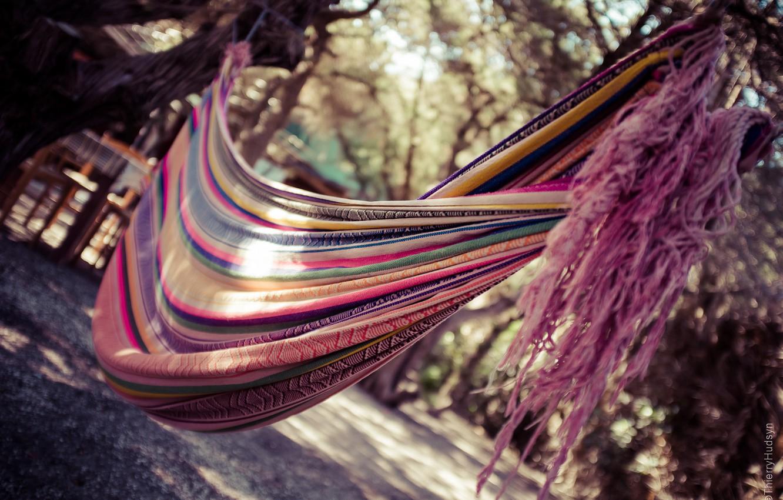 Photo wallpaper nature, stay, hammock, fabric