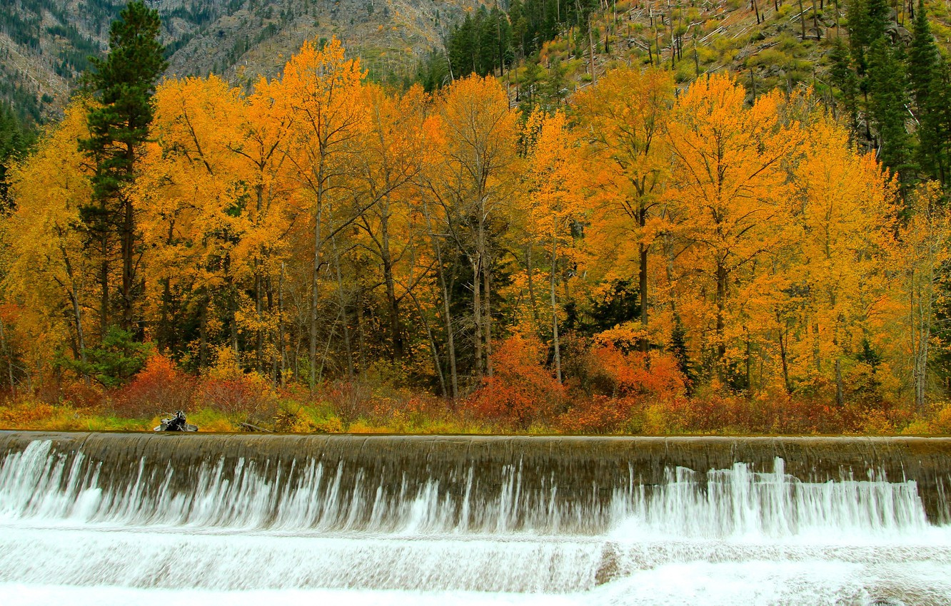 Photo wallpaper autumn, forest, trees, river, waterfall, stream, thresholds