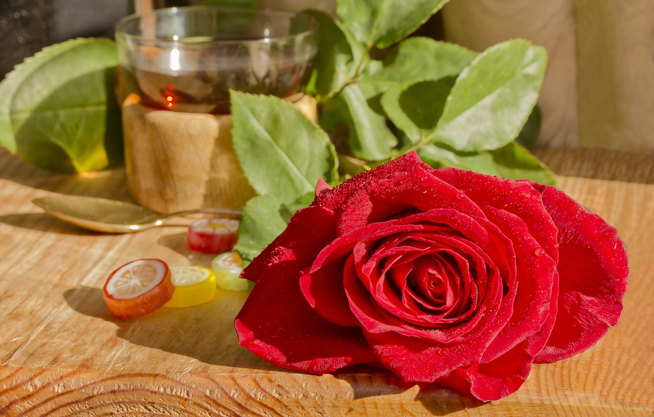 Wallpaper Rose Petals Red Marmalade Images For Desktop Section Images, Photos, Reviews