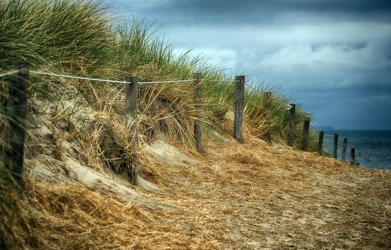 Photo wallpaper beach, the fence, dunes