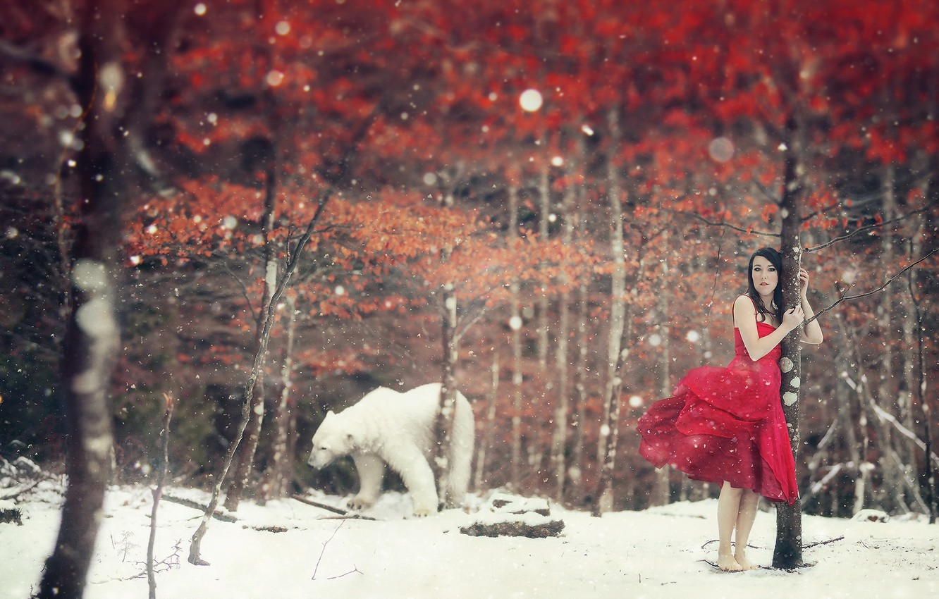 Photo wallpaper winter, girl, the situation, bear