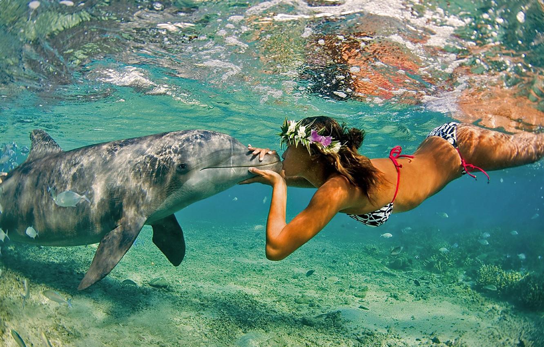 Photo wallpaper Nature, The ocean, Sea, Girl, Kiss, Summer, Dolphin, Pair, Friendship