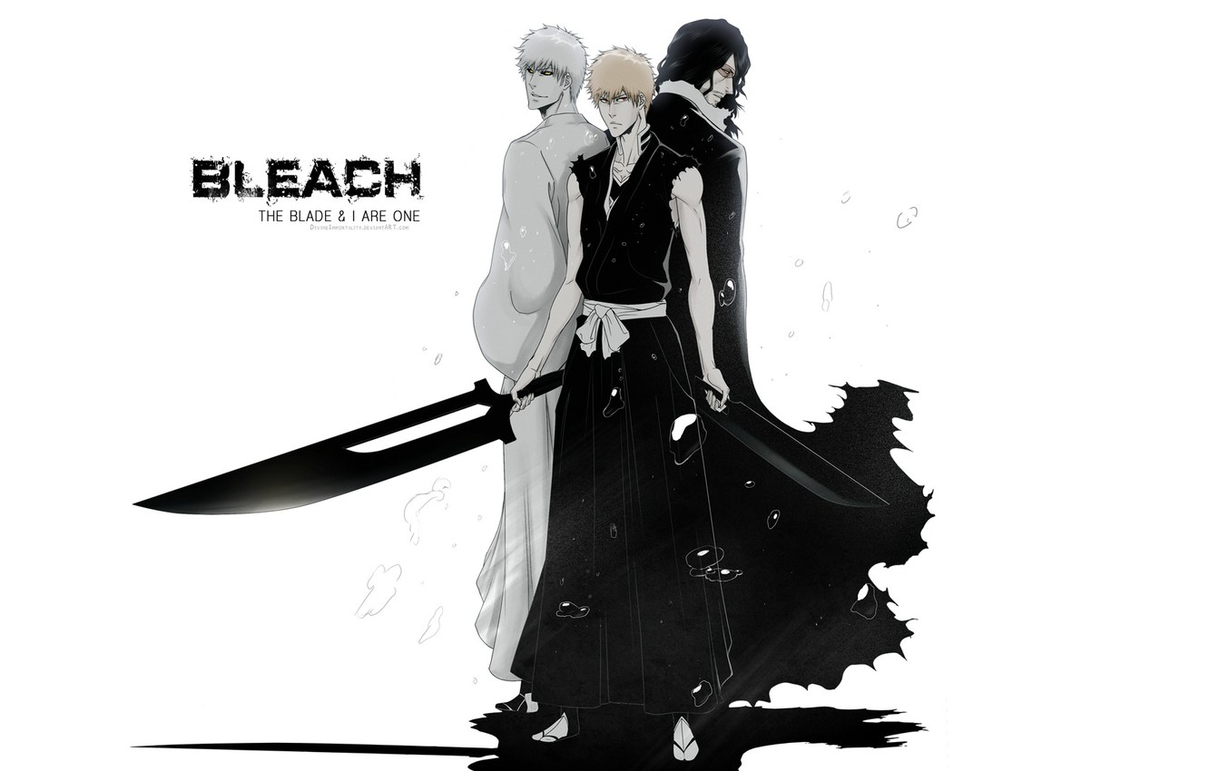 Photo wallpaper swords, bleach, Kurosaki Ichigo, empty