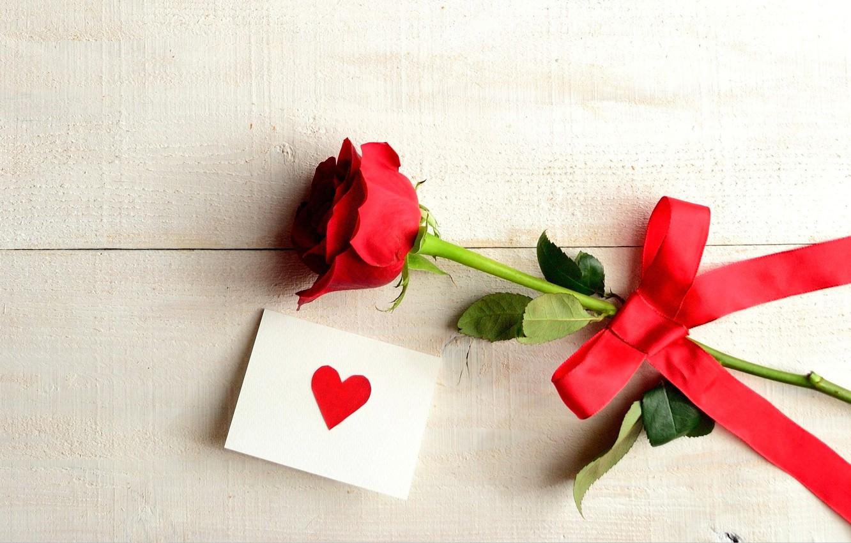 Photo Wallpaper Flower Love Holiday Heart Rose Love Rose