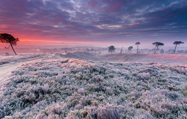 Photo wallpaper field, landscape, sunset